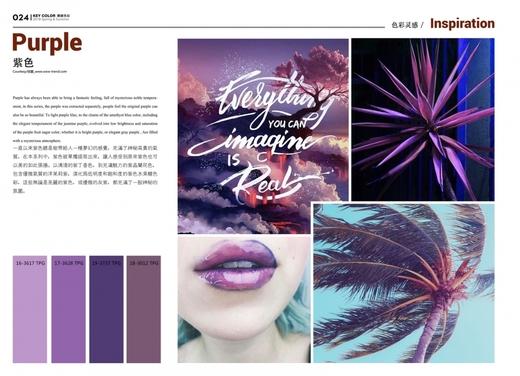 2018春夏 毛衫企劃 - 紫色